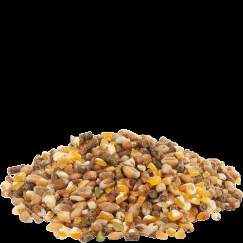 animazoo_mix-ponte-granules-et-concasse