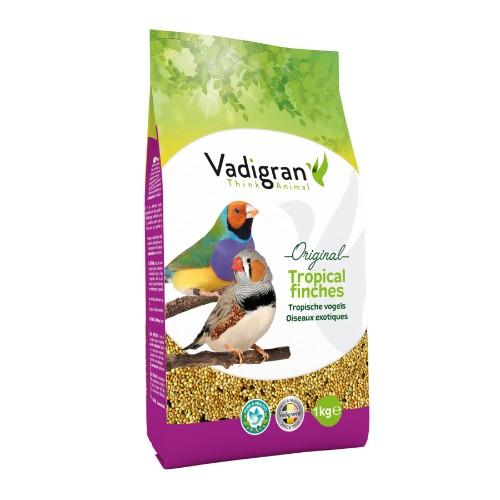 animazoo_vadigran-oiseaux-exotiques