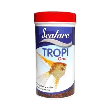 animazoo_tropi-gran-scalare