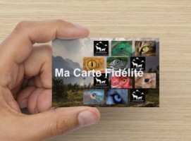animazoo_carte-fidelite
