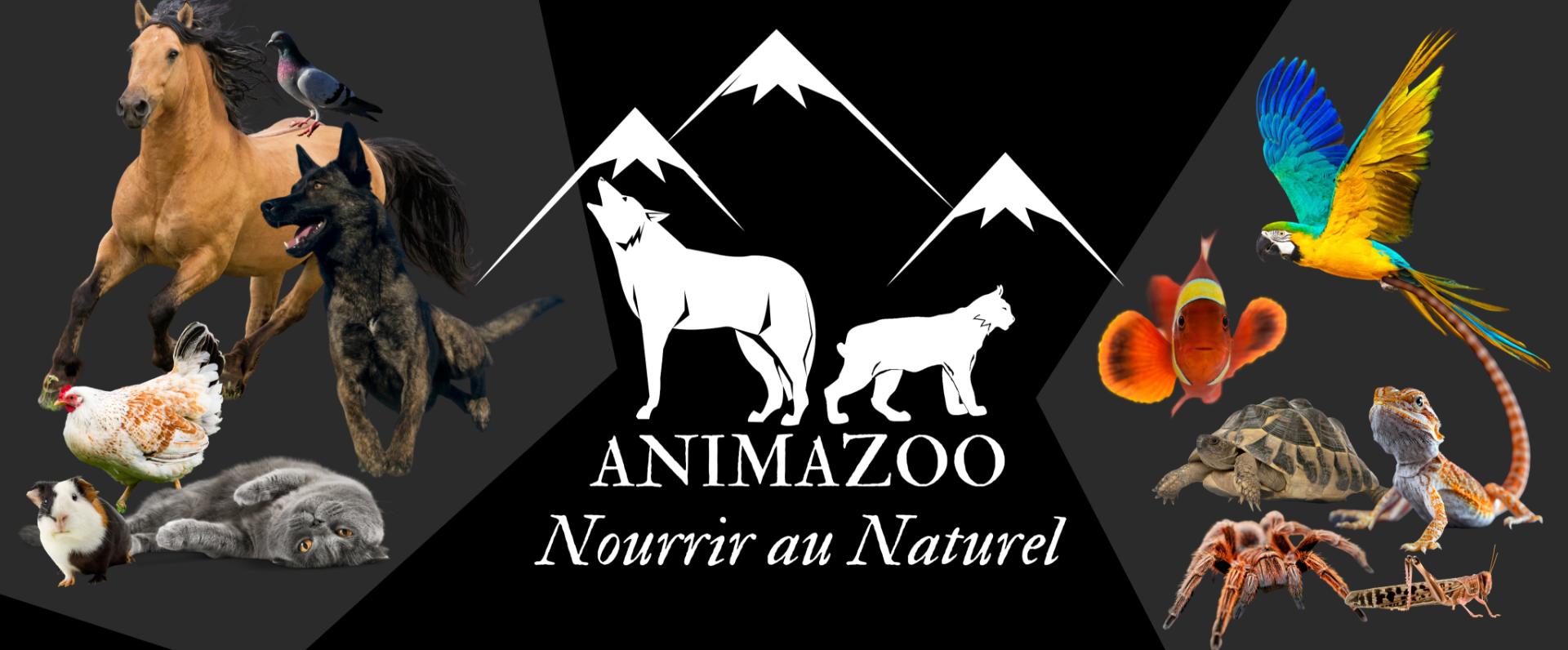 animazoo_bienvenue-sur-notre-nouvelle-boutique-en-ligne